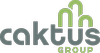 Caktus Consulting Group